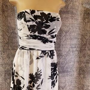 Ann Taylor Dress | Size 6P